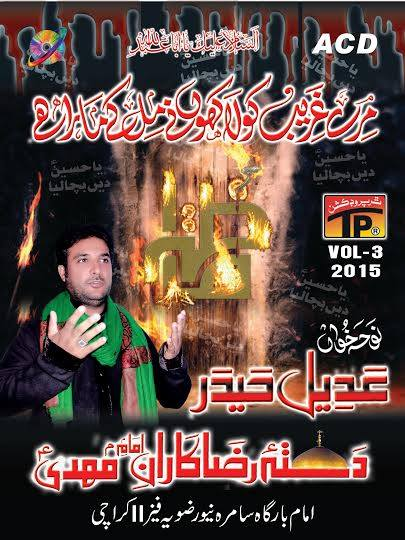 Syed Adeel Haider Naqvi 2016