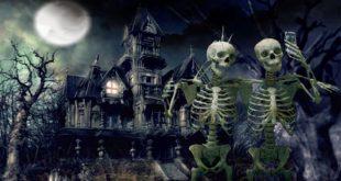 Halloween latest HD Wallpapers
