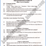 Matric Class English Guess Paper in Annual Exam 2021