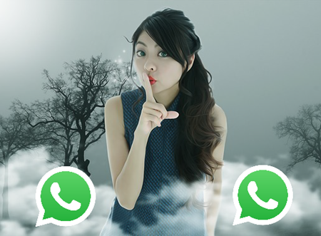 Vietnam girls Whatsapp number